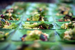 Vineyard Wedding Salads