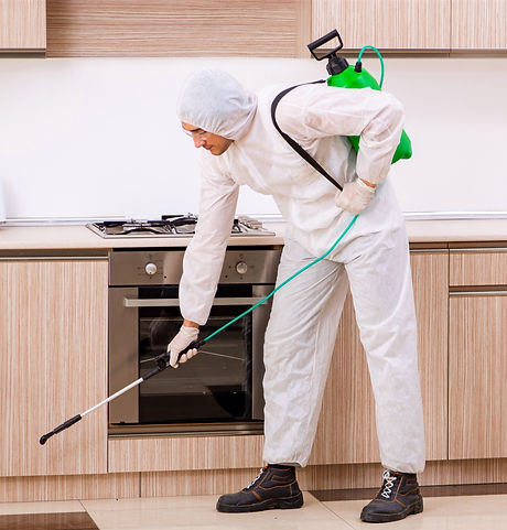 Professional%20contractor%20doing%20pest%20control%20at%20kitchen_edited.jpg