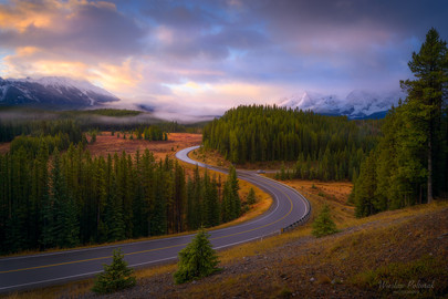 Autumn Morning Drive