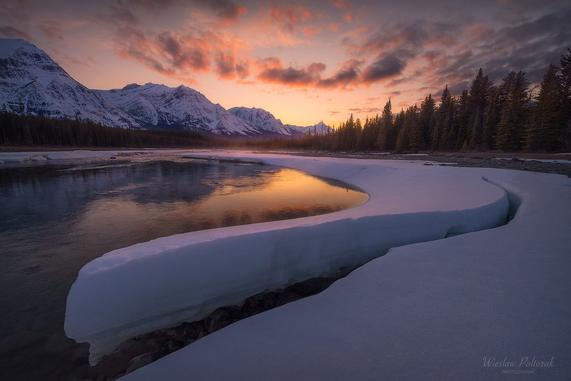 Spring is in the Air, Jasper National Park