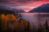 Fall Colors Mosaic