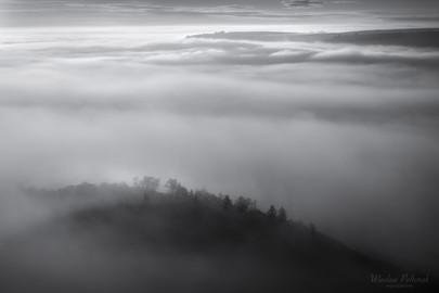 Prairie in the Morning Fog