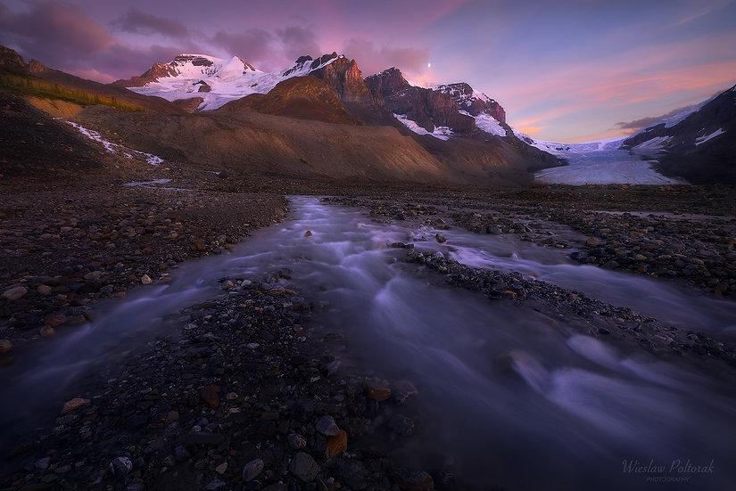 Alpine Spirit, Jasper National Park