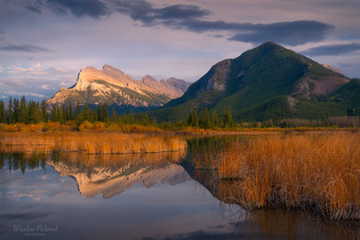 Vermilion Lakes Tranquility