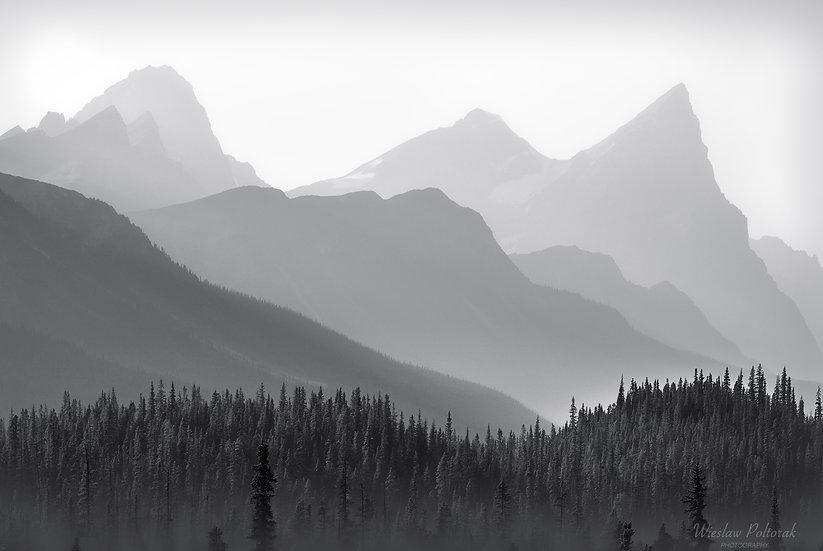 Mistaya River Valley, Banff National Park