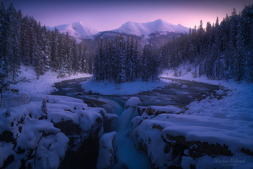 Embraced by The Winter, Jasper National Park