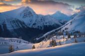 Alpine Snapshot
