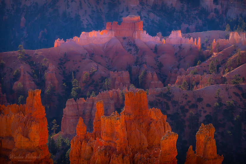 Bryce Temples