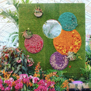 Franklin Park Conservatory Annual Orchids Exhibition 2021