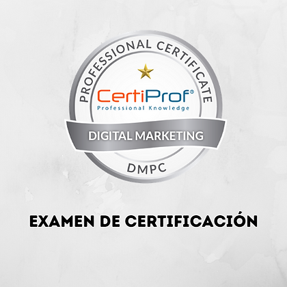 Examen Digital Marketing Professional