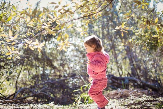 小树林里的光与影