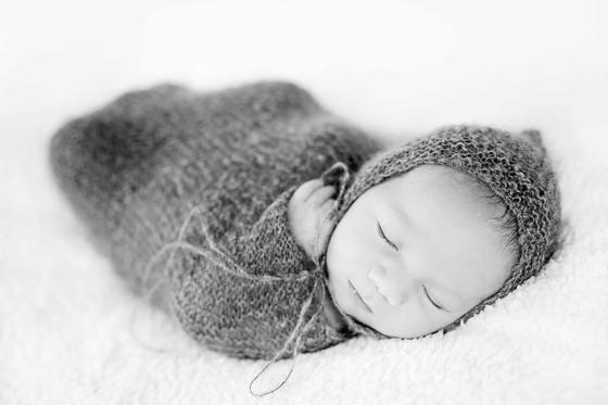 寻新生宝宝模特