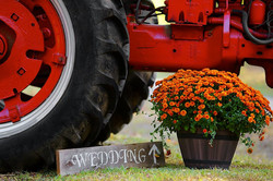 Flowers with tractor