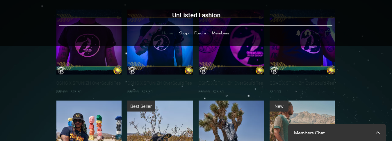 Retail/Fashion Website