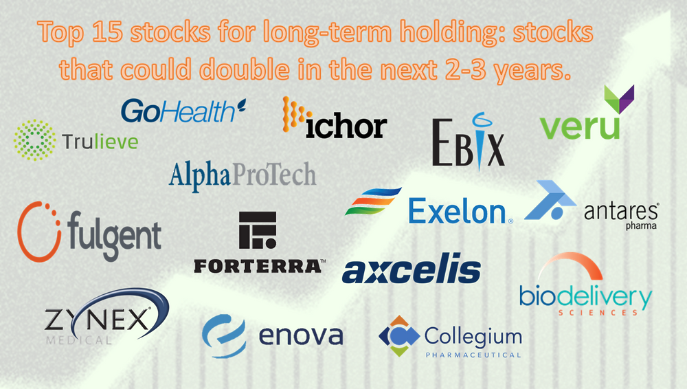 Top 15 stocks for long term holding: stocks that could double in the next 2-3 years.