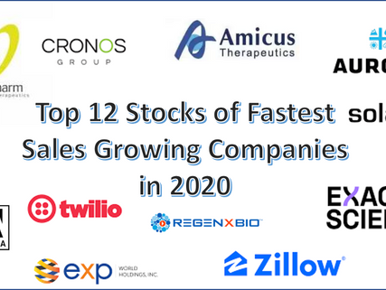 Top 12 Stocks in 2020 of Companies with Fastest Growing Sales