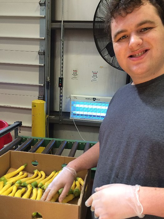 Image of Pat, wearing a gray t-shirt, looking at the camera as he sifts through vegetables at the Food Bank.