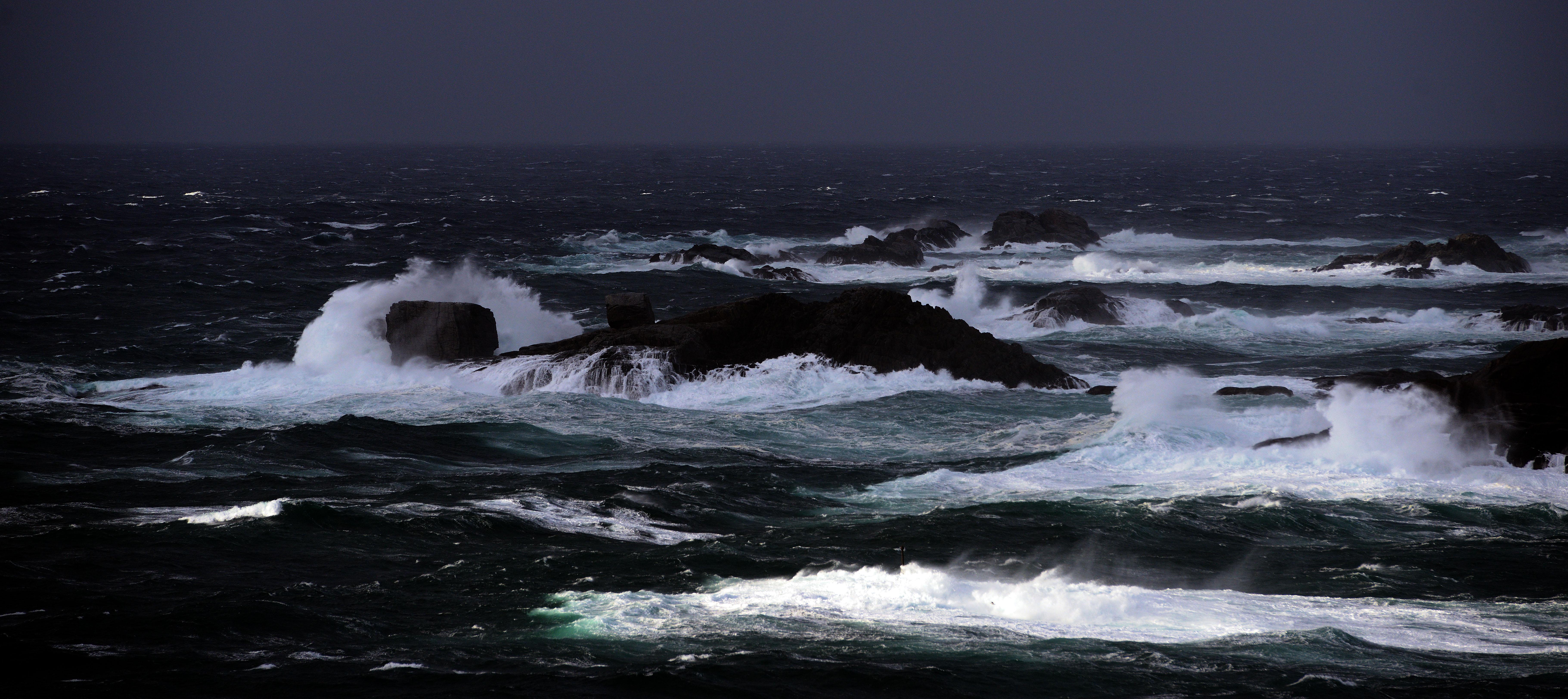 Der havet er vilt