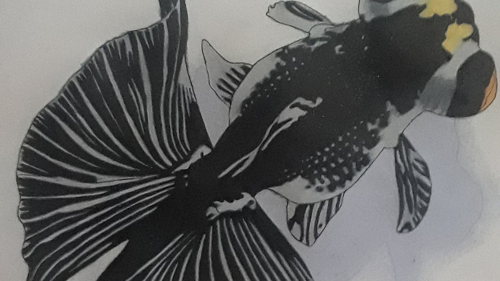 Butterfly Goldfish Print