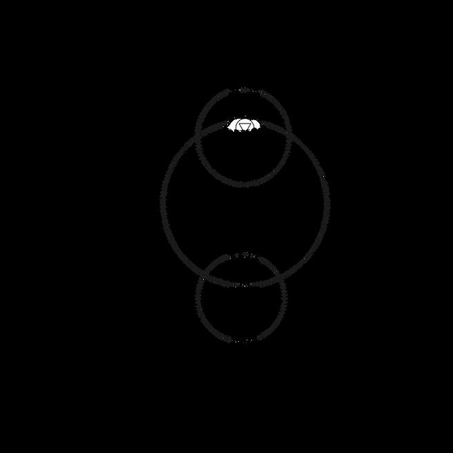 CHACKRAS_corrigido-vector sem olho.png