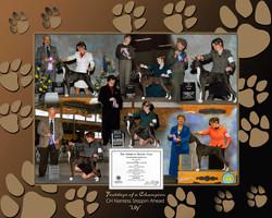 Show dog photo montage