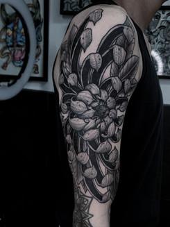 Chrysnathemum Half Sleeve.jpg