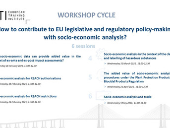 Invitation - Workshop cycle on socio-economic analysis