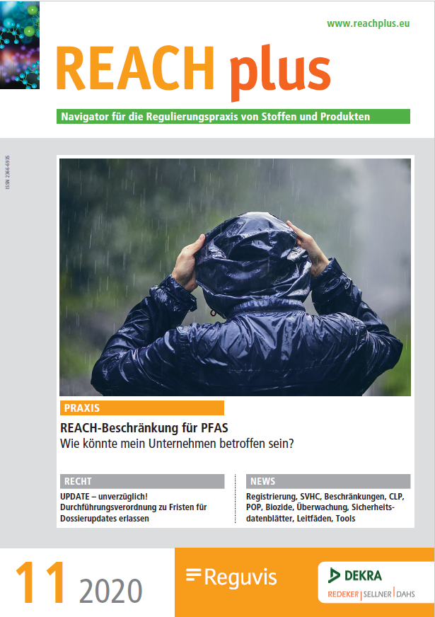 Cover of REACH plus magazine, November 2020 issue