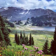 Backcountry calm 🍁 #panoramaridge #back
