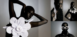Fashion Paper Acessories