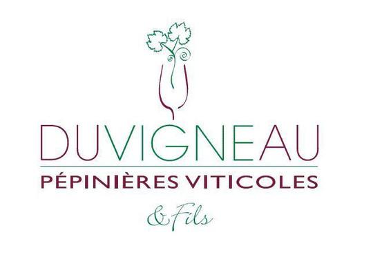 duvigneau_et_fils logo - Sponsor Vélo Club Pays de Langon