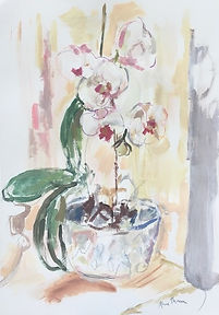 White Orchid mixed media 43cm x 61cm £28