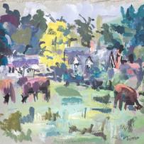 Cows in Grantchester