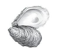 oysterbff.jpg