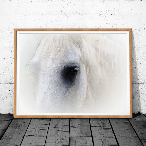 Horse Wall Art, Horse Print, Horse Art, Printable Wall Art, Digital Download P
