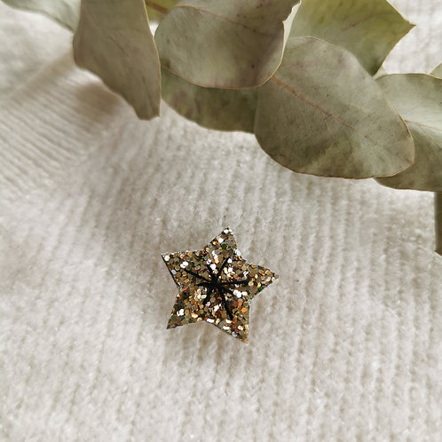 Pin's étoile (plusieurs options)