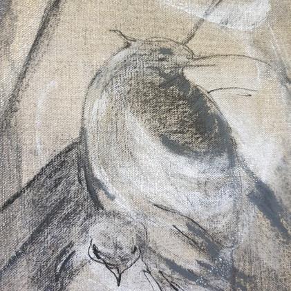 Détail 4 oiseaux perchés