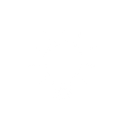 noun_Light Bulb_58667 (3).png