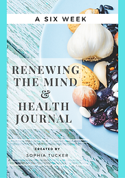 6 WEEK FRONT COVER RTM & HEALTH JOURNAL