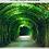 Thumbnail: A Place Called Gethsemane - Prayer Devotional