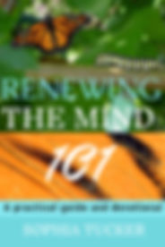 mindrenewal101_1_original-5.jpg