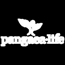 Pangea_1x1.png