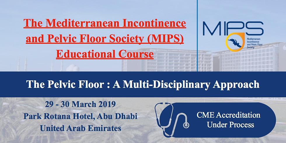 MIPS Educational Course - The Pelvic Floor : A Multidisciplinary Approach