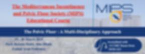 MIPS Banner .jpg
