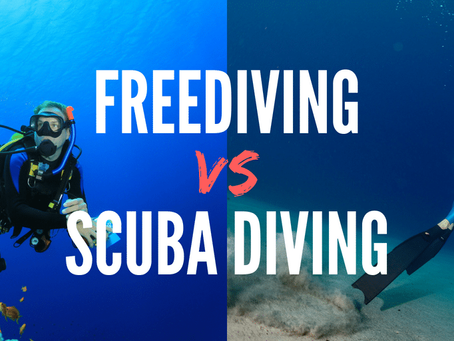 Major differences between freediving and scuba diving
