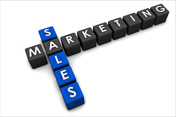 sales training programs for sales organizations