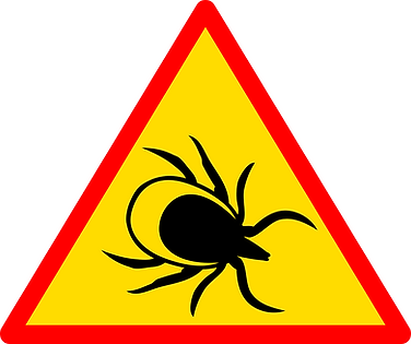 sign with tick image