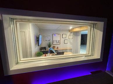 Directors acoustical window