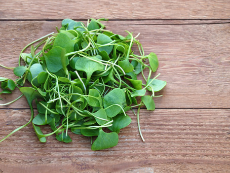 Why You Should be Eating Watercress in 2019