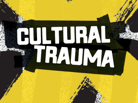 """Participation in online seminar """"Experiencing and Remembering Cultural Trauma"""" from New School"""